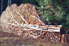 堆木材堆成这样你家里人造么