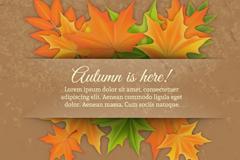 精致秋季枫叶背景矢量素材