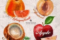 4款水彩水果设计矢量素材