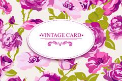 精美紫色玫瑰花卡片矢量素材