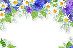 白色与紫色菊花边框设计矢量素材