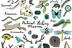 30款自然野生动植物矢量素材
