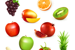 10款美味水果设计矢量素材