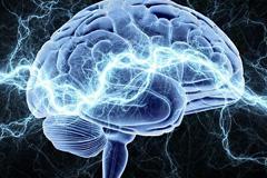 打造最强大脑的25个方法