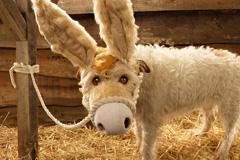 英国小猎犬搞笑扮演圣诞卡中角色