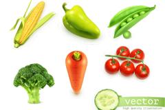 10款新鲜蔬菜设计矢量素材