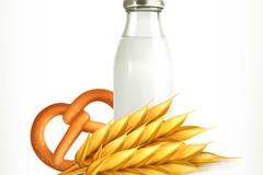 健康谷物牛奶早餐矢量素材