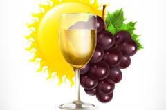 葡萄与葡萄酒设计矢量素材