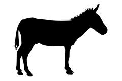 逼真黑色驴子剪影矢量素材