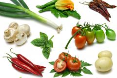 12种常见蔬菜高清图片素材
