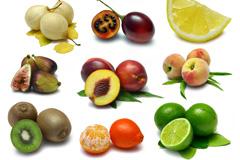 16种柠檬梨等常见水果高清图片