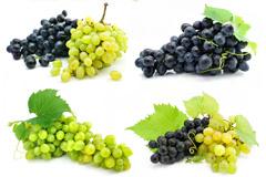 7组葡萄高清图片素材