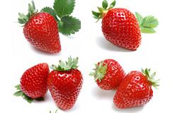 6组草莓高清图片素材