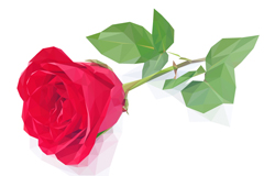 单支红色玫瑰花矢量素材