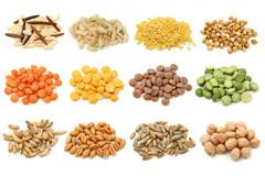 16种谷类粮食高清图片