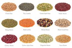 16种谷物豆类高清图片