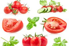 西红柿和薄荷叶高清图片