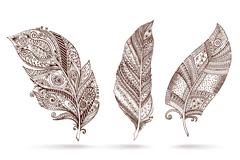 3款手绘花纹羽毛矢量素材