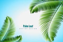 绿色棕榈树矢量素材