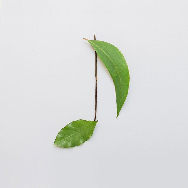 树叶音乐符号