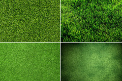 4款绿色草地高清图片素材