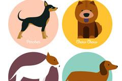 4款创意宠物狗标签乐虎娱乐