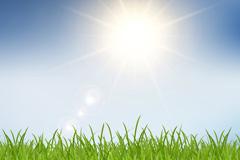 阳光下的草地矢量素材