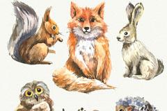 5款水彩绘野生动物矢量素材