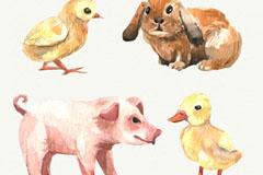 4款水彩绘农场动物矢量素材
