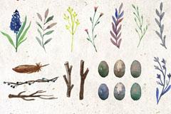 26款水彩绘植物和鸟蛋自然元素矢量素材