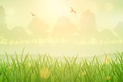 绿色草地和飞鸟自然风景矢量素材