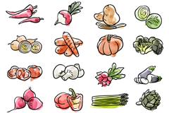 20款水彩绘蔬菜矢量素材