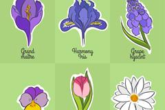 6款彩色花卉设计矢量素材