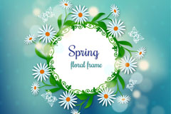 春季白色雏菊边框标签矢量素材