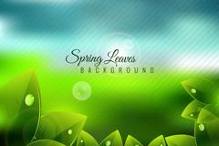 春季带露珠的绿叶矢量素材