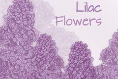 彩绘紫色丁香花矢量素材