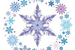 创意雪花环和冰晶矢量素材