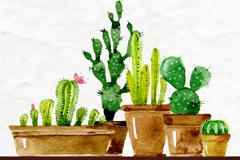 5盆水彩绘春季多肉植物盆栽矢量图