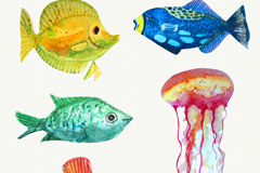 5款水彩绘海洋生物矢量素材