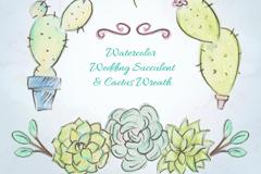 4款水彩绘婚礼多肉植物矢量素材