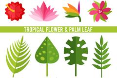 12款热带植物花卉和棕榈叶子矢量素材