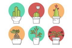 6款创意盆栽多肉植物矢量素材