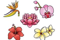 5款卡通热带花卉矢量素材