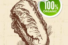 手绘有机白菜设计矢量素材