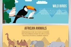 2款创意野生鸟类和非洲动物banner矢量素材