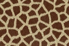 创意长颈鹿花纹背景矢量素材