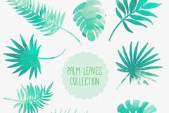 8款水彩绘棕榈树叶矢量素材