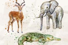 3种水彩绘非洲动物矢量素材