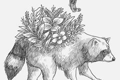 手绘背上开花的浣熊矢量素材