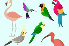 9款彩色鸟类设计矢量素材